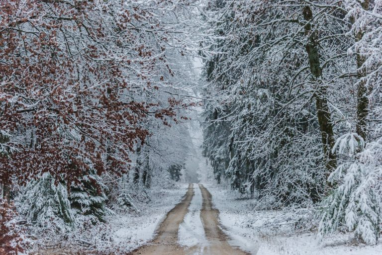 Read more about the article Advent – A Christmas Journey to Hope:  When Confusion Causes Doubt, Pay Attention to Your Dreams